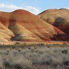 Painted Hills by Jonathan Cohen