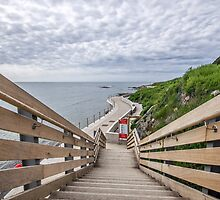 Steps At Back Beach - Lyme Regis by Susie Peek