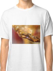 Solid Honey Classic T-Shirt