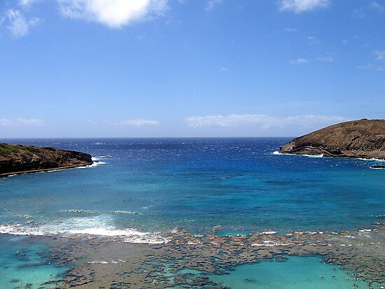 Hanauma Bay by Sean Jansen