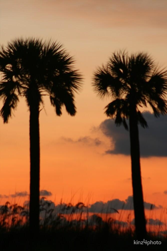 Twin Palms by kinz4photo