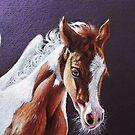 Pegasus foal by Elena Kolotusha