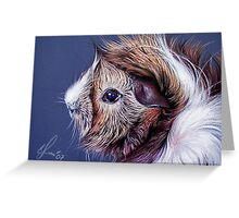 Bibble the guinea pig Greeting Card