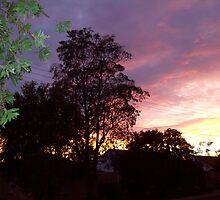 Sunrise by Charmaine van Nunen