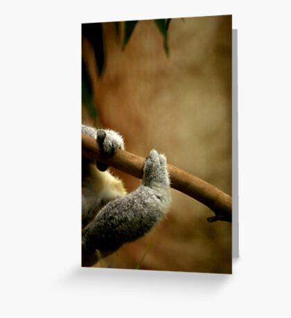 Koala Climb Greeting Card