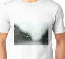 Looking through the Window Pane Unisex T-Shirt