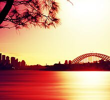 Sunset over the Sydney Harbour Bridge  by Steven Arnold