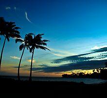 Good Night Paradise by Jose O. Mediavilla