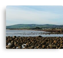 Coastal Edge Canvas Print
