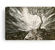 Baron Tree in a Storm Canvas Print