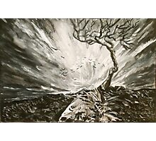 Baron Tree in a Storm Photographic Print