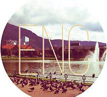 Pidgeons in Bergen - ENC by Equui