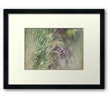 """""""Earthly Delight"""" Framed Print"""