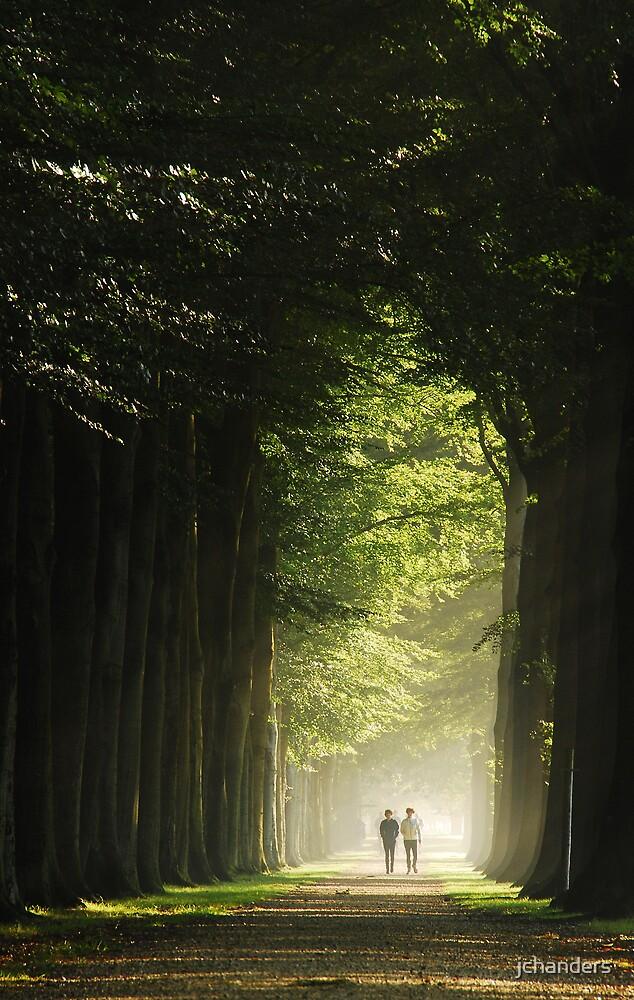 Walking on a bright lane by jchanders