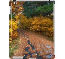 Lakeside Path in Autumn iPad Case/Skin
