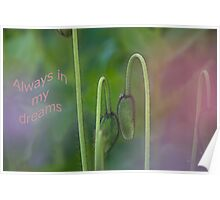 Always in my dreams Poster