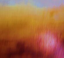 field of vision by Deborah Milligan