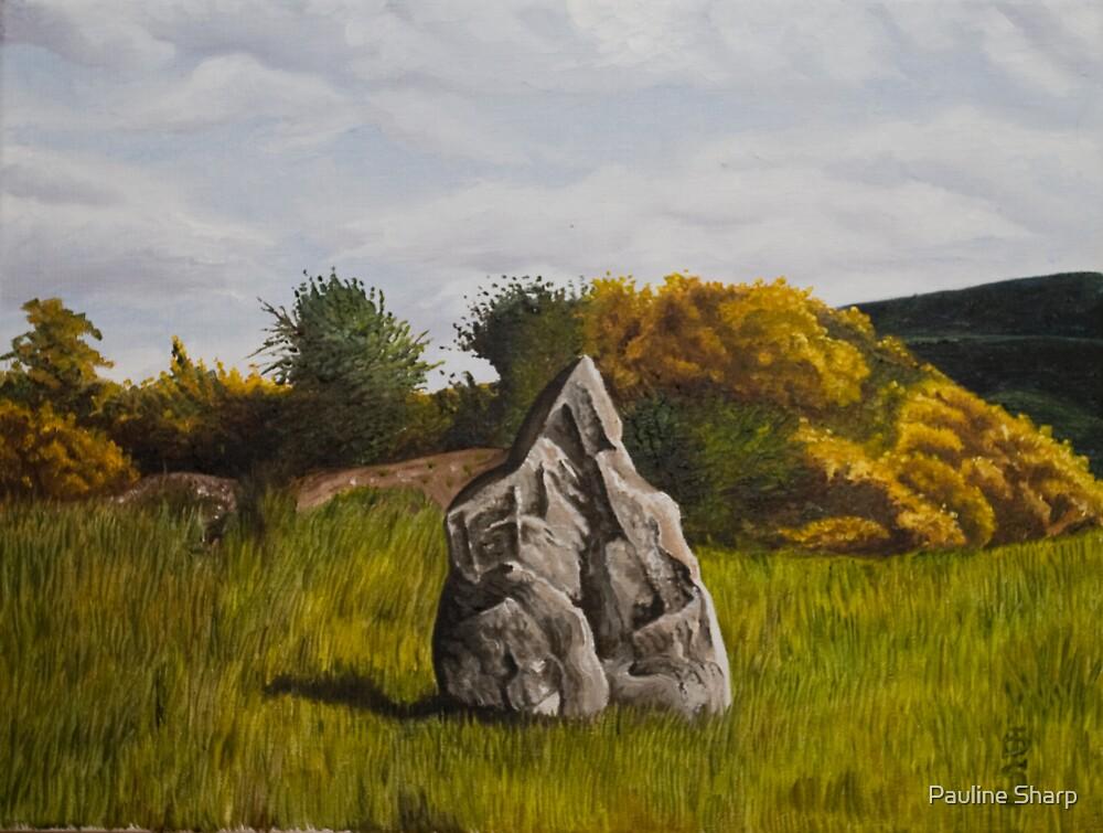 The Turraree stone, Tinnakilla , Limerick ,Ireland by Pauline Sharp