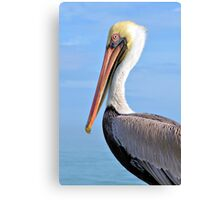 Ready For My Close Up Canvas Print