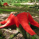Lea Turto: Red Stump by Art  Works ry