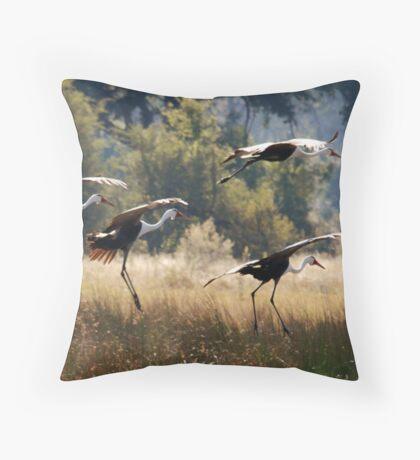 Wattled Cranes - Okavango Delta, Botswana. Throw Pillow