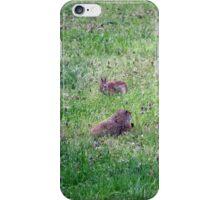 Backyard Meeting iPhone Case/Skin