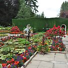 The Italian Gardens by Cathy Jones