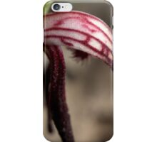 Pyrorchis Nigricans 3 iPhone Case/Skin