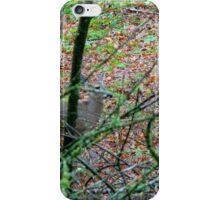 Sneak a Peak iPhone Case/Skin