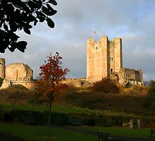 Conisbrough Castle by Theresa Elvin