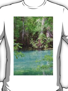Through the Cypress Trees T-Shirt