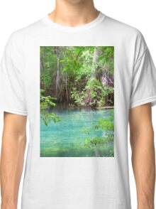 Through the Cypress Trees Classic T-Shirt