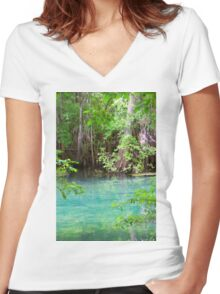 Through the Cypress Trees Women's Fitted V-Neck T-Shirt