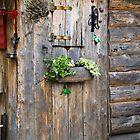 Garden Hut by Albert Crawford