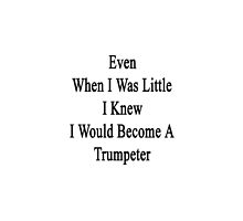 Even When I Was Little I Knew I Would Become A Trumpeter  by supernova23