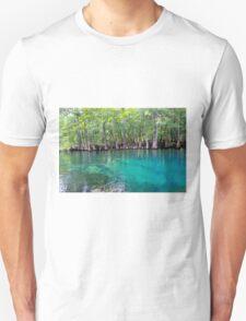 Spring into Summer  T-Shirt