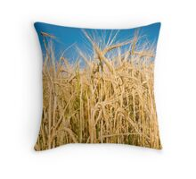 Alberta Wheat Throw Pillow