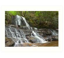 Laurel Falls, Great Smoky Mountains Art Print