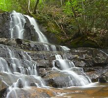 Laurel Falls, Great Smoky Mountains by lbballard