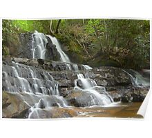 Laurel Falls, Great Smoky Mountains Poster