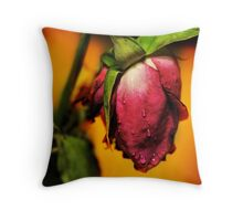 Death of an Angle Throw Pillow