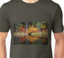 Colors Of Fall Unisex T-Shirt