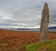 Standing stone and field by Jaime Pharr