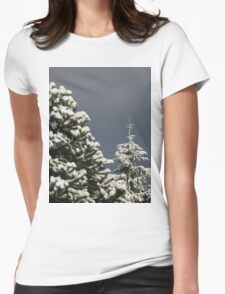 Seasons Greetings Womens Fitted T-Shirt