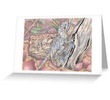 Frilled Lizard Greeting Card