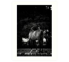 Dark Horse II Art Print