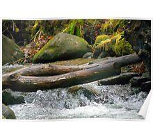Little Water Falls Poster