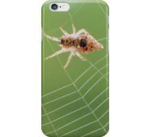 Trashline Orb Weaver iPhone Case/Skin