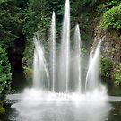 The Ross Fountain by Jann Ashworth