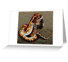 Corn Snake Greeting Card